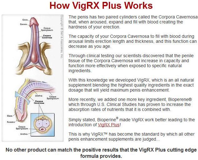 VigRX Plus Miglior Prezzo