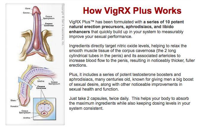 VigRX Plus Over The Counter